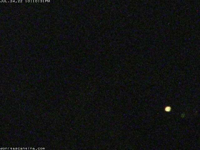 Crested Butte Elk Ave Cam